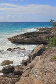 Costa rochosa do oceano. Guadalupe — Fotografia Stock