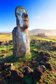 Lone standing moai in bright sunshine in Easter Island — Stock Photo