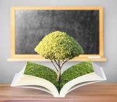 открытая книга с зеленое дерево — Стоковое фото