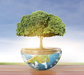 Planet earth and tree — Stock Photo