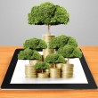 Concept of money tree growing from money  — Stock Photo #55122925
