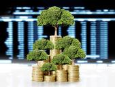 绿色的植物在金币上 — 图库照片
