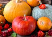 Bright pumpkins — Stock Photo