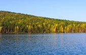 Lake and autumn wood  — Stock Photo