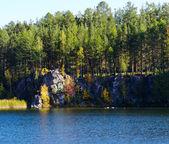 Autumn trees and rocks — Стоковое фото