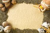 Sea shells frame — Stock Photo