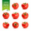 Tomato set with clipping path — Stock Photo #60059279