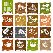 Nuts icon set - 2 — Stock Vector