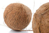 Whole coconuts — Foto Stock