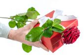 Hand holding a gift and a red rose — Stockfoto