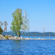 Gull Island on Lake Turgoyak, Southern Urals — Stock Photo #58430601