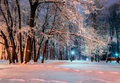 The winter evening — Stock Photo