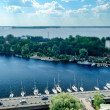 View of the Bay of Vyborg from the tower of the castle — Stock Photo #65297511