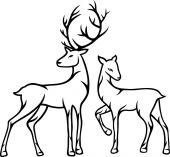 Deer couple — Stock Vector