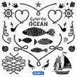 Vector pack of nautical elements. Rope swirls, logos and badges. — Stock Vector #62534357