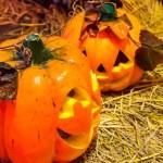 Jack o lanterns Halloween pumpkin face. — Stock Photo #58448849