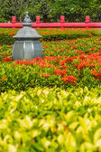 Floor lamp amidst between flower spike and redfence  — Stockfoto