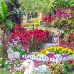 Beautiful flower garden. — Stock Photo #66891075