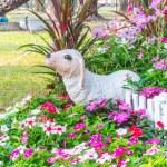 Beautiful flower garden. — Stock Photo #66891339