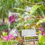Beautiful flower garden. — Stock Photo #66892129