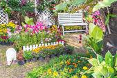 Hermoso jardín de flores. — Foto de Stock