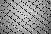 close up of wire fence in Black and White. Background — Stock Photo
