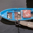 Blue fishing boat seen from above — Stock Photo #59288493