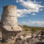 Stone Forest near Varna, Bulgaria, Pobiti kamani, rock phenomenon — Stock Photo #63900901