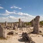 Stone Forest near Varna, Bulgaria, Pobiti kamani, rock phenomenon — Stock Photo #65699439