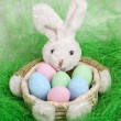 Easter basket with decorated eggs and the Easter bunny — Stock Photo #65702067