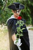 Mystery man holding a rose — Stock Photo