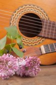 Two acoustic guitars and a bouquet of spring flowers on the tabl — Zdjęcie stockowe
