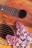 Dwie gitary akustyczne i bukiet kwiatów wiosna na tabl — Zdjęcie stockowe