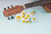 Little guitar and a bouquet of daisies on the azure surface — Stock Photo