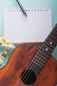 Little guitar and a bouquet of daisies on the azure surface — Stockfoto