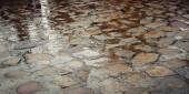 Wet paving stone with puddles - vintage effect. Yard paving stones. — Stock Photo