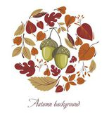 Autumn leaves with acorn — Stock Vector