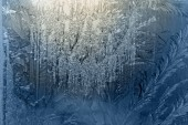 Frozen  window-glass — Stock Photo