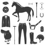 Vector set of icons polo — Stock Vector #65837559