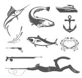 Vector Set of Icons and Signs of Equipment for Spearfishing — Stock Vector