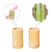 Dreaming of two bamboo cups — Stock Photo