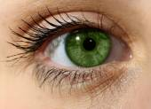 Close up green eye with makeup  — Stock Photo