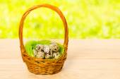 Quail eggs in the wicker basket for Easter — Stock Photo