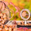 Nuts and nutcrackers — Stock Photo #54473319