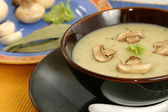 Creme de Mushroom is a soup in which combining the meat and mushrooms in hot water until the flavor extract — Stock fotografie