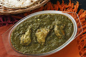 Saag Chicken it is a north Indian vegetable — Stock Photo