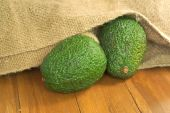 Two avocadoes pour out of old agriculture sack on wooden table — Stock Photo