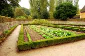 女王のハムレット、フランスのベルサイユで小さなコテージ ガーデン — ストック写真