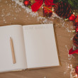 Notepad with a pensil and xmas decoration written 2015 goals — Stock Photo #60552807
