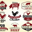 Collection of Premium Beef, Chicken and Pork Labels and Design Elements in Vintage Style — Stock Vector #65345757